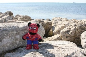 Spider-bear at the Gulf of Mexico